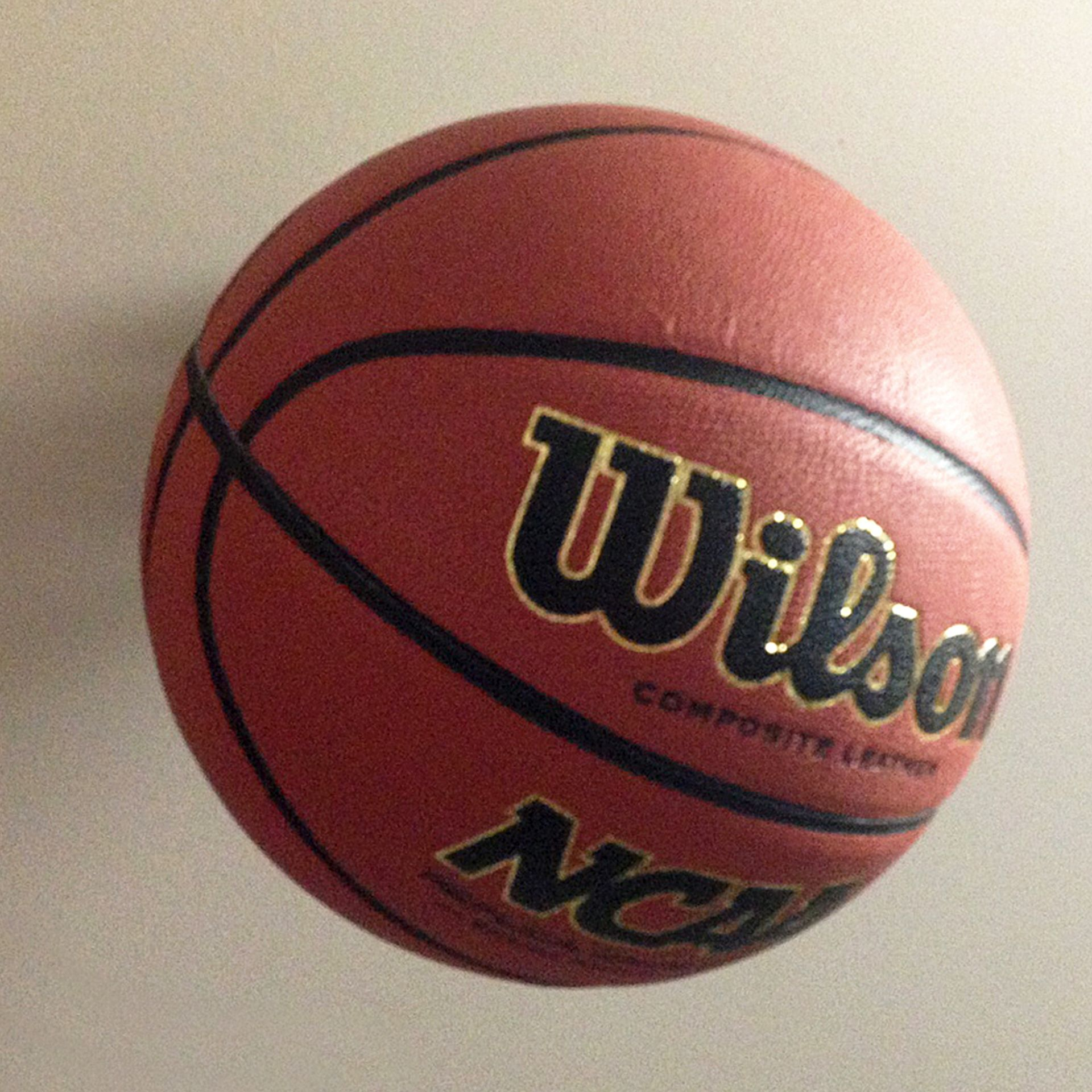 INVISI-ball Wall Mount - Basketball